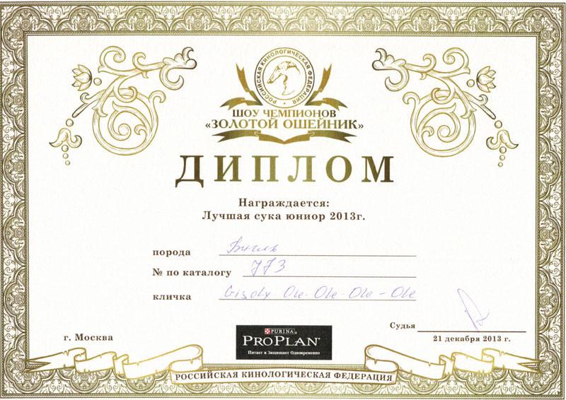 Получен диплом Киры лучшая сука юниор